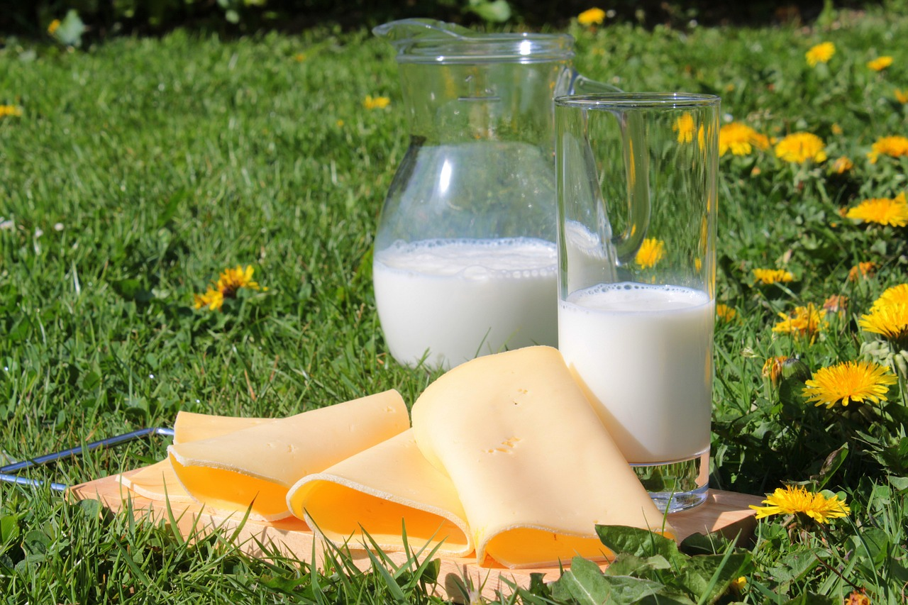 Nahrungsmittelunverträglichkeit Milch -Heilpraktikerin Sylvia Böhnlein in Bamberg